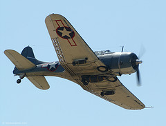Dauntless Dive Bomber